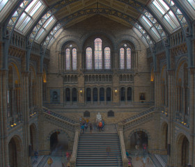 natural_history_museum-1