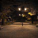 park_at_night